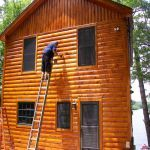 stained log house siding
